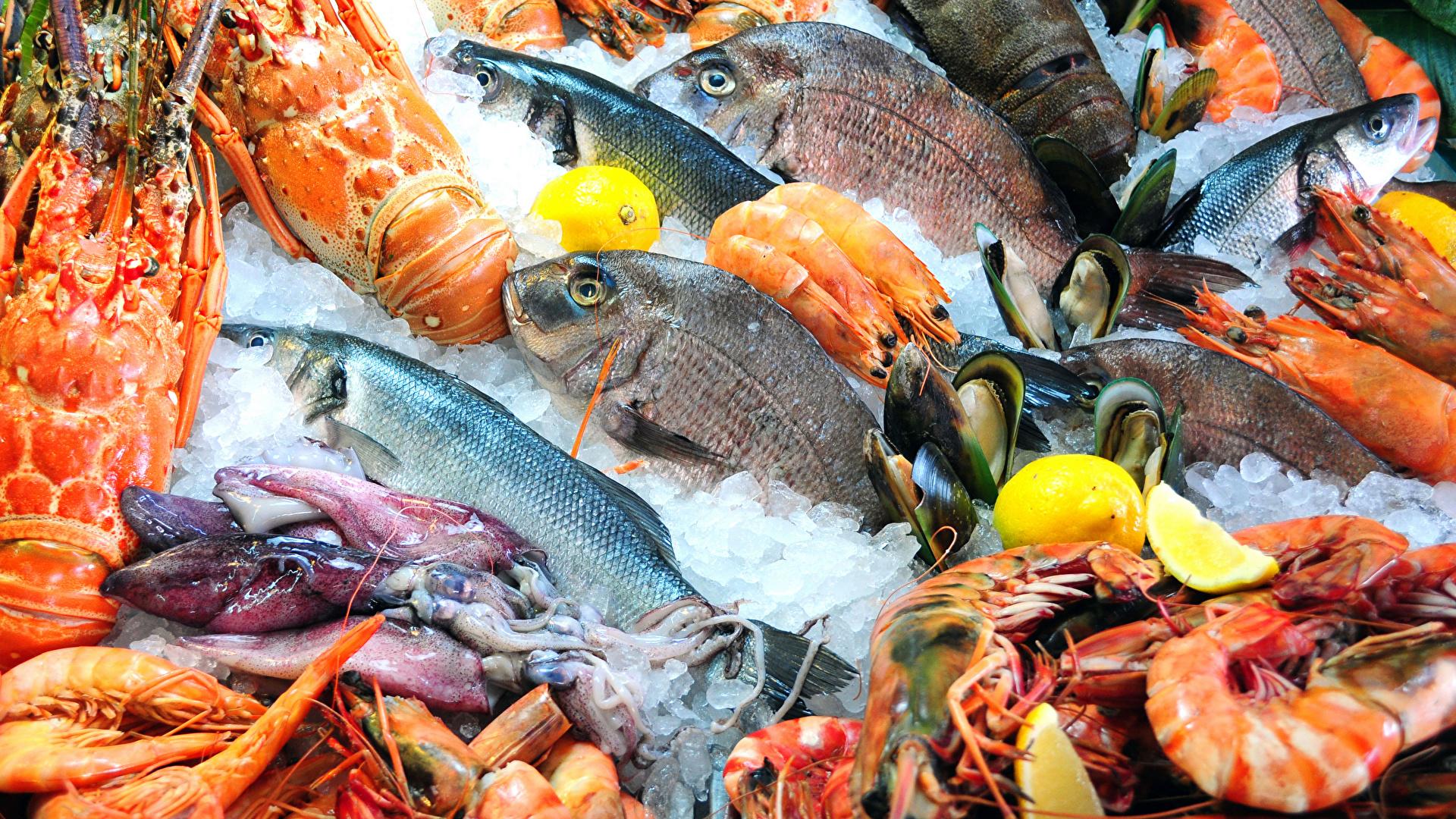 Seafoods_Fish_Food_Shrimp_Crayfish_542986_1920x1080